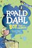 J NONFIC: Boy by Roald Dahl