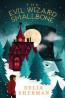 J FIC: The Evil Wizard Smallbone by Delia Sherman