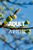 What's New in April: Adult Collections